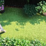 Artificial Grass – Strata Approved