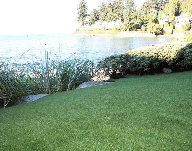 backyard artificial grass lawn beside lake