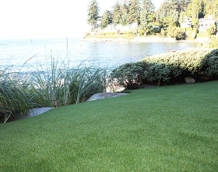 backyard artificial grass lawn beside lake