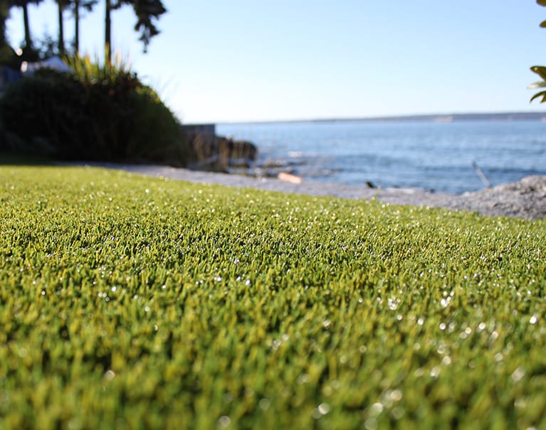 close up shot of artificial grass in backyard near water