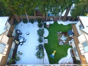 artificial grass compared to natural grass with snowfall in canadian winter