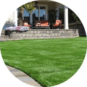Bella Turf artificial grass for landscaping