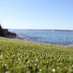 Percolation Rates of Artificial Grass vs Natural Grass