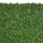 "Elite Play, Bella Turf's true ""no infill necessary"" artificial grass."