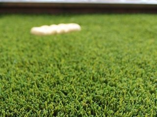 bella-turf-pet-friendly-artificial-turf-grass-fake-plastic-grass-from-bella-turf-canada-new-grass-products-2019_0000_toy