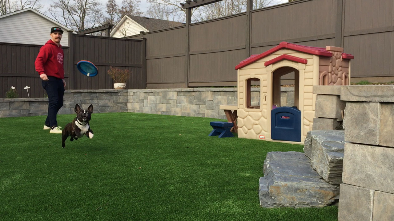 Artificial grass with pet house