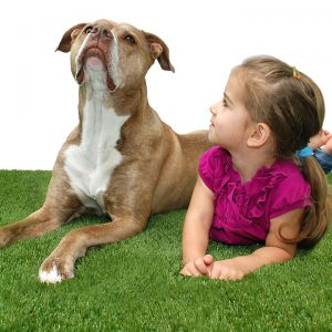 Girl playing with dog on the artificial grass