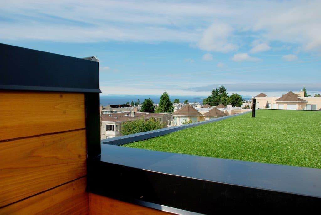 Rooftop grass