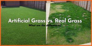 artificial grass versus real grass