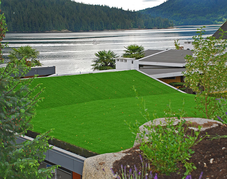 base-models-2021-artificial-grass-_0000_2021-bt-base-models-6.jpg