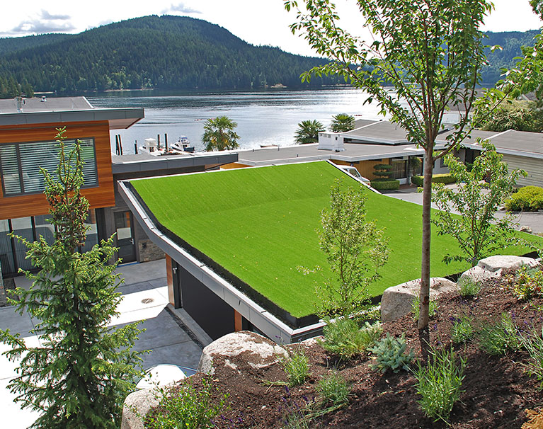 Astroturf for roof top