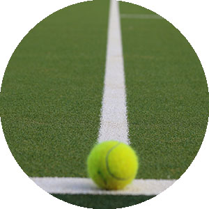 Custom Order Artificial Grass for Sports Systems