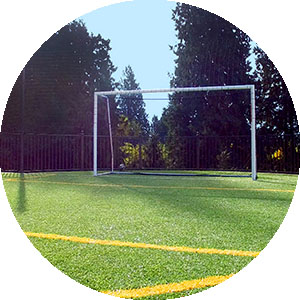 Artificial Grass for Sports Systems