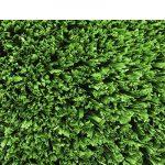 Fake Grass Putting Green